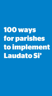 100 ways for parishes to implement Laudato Si'