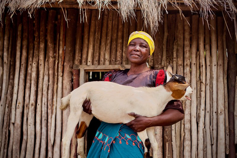 Fanny Chigamba holds one of her family's goats, Machinga, Malawi.Photo: Alan Whelan/Trócaire.