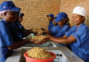 where aid meets trade