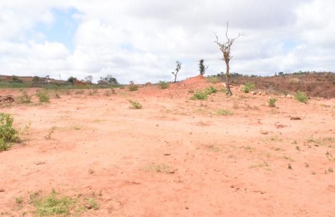 barren land in borana