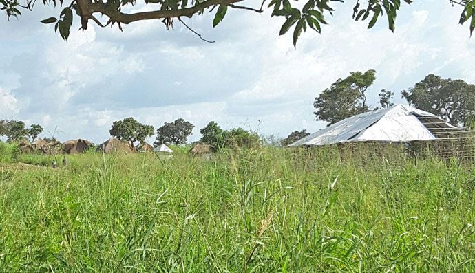 biringi homesteads