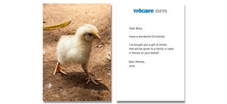 e-card chick image
