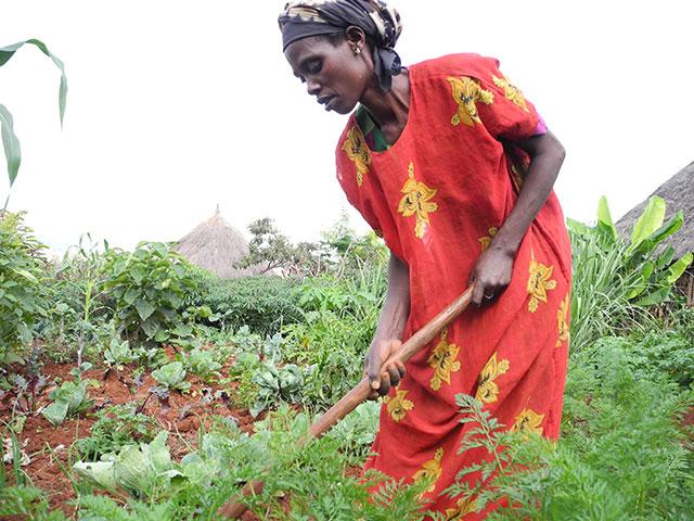 Mechu Dayo working on her farm in Ethiopia