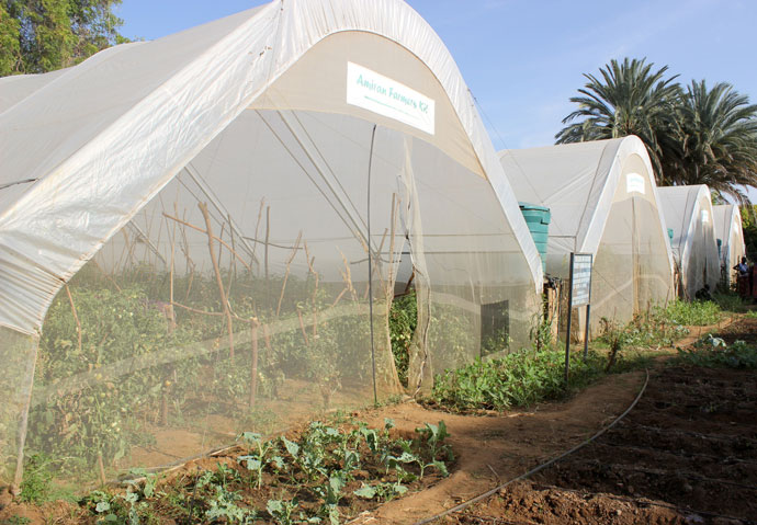 Marvelous An Oasis In The Desert Greenhouses Transform Drought Home Interior And Landscaping Oversignezvosmurscom