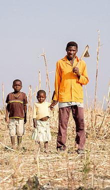 Hunger crisis