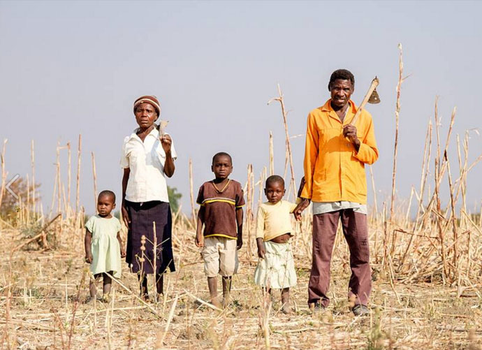hwami family zimbabwe