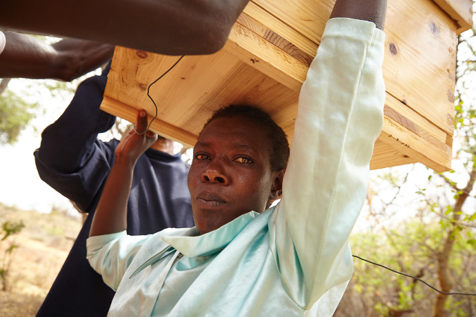 34 year old, Jane Ngugi is a member of Kiaweru Bee keeping Group. Photo: Aidan O'Neill.