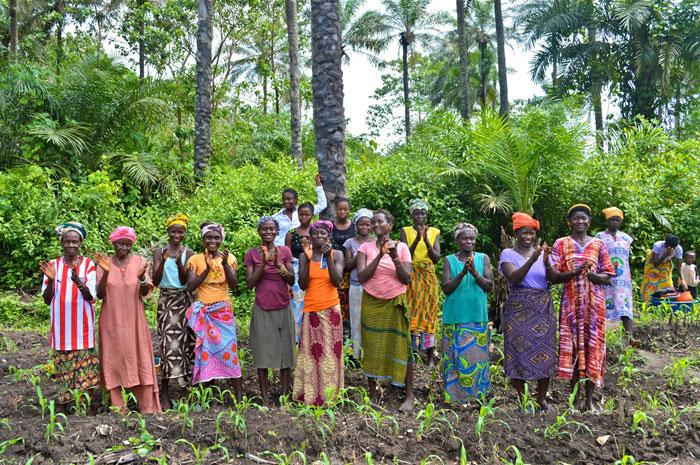 The women of Kassirie Mataoi on their farm, Kambia District.