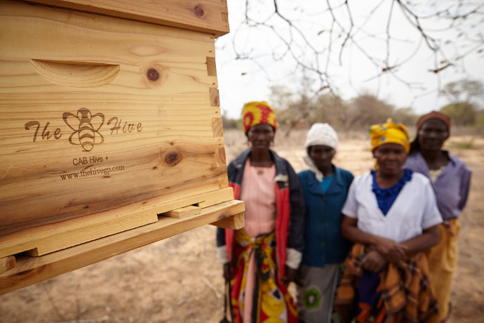 With the modern complete African bee hives, the group can produce more honey.