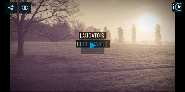 quotes from laudato si