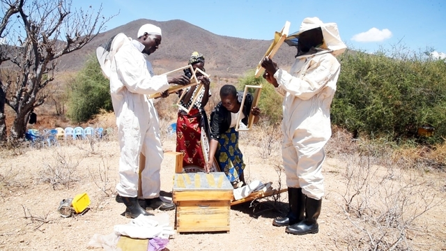 Lydia Kagendo (second right) working with group members in bee hive maintenance. Photo : Kikonde Righa / Trócaire