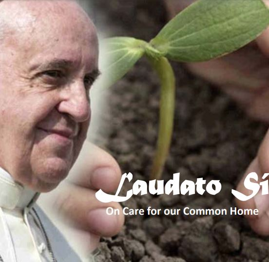 Laudato Si group study presentation