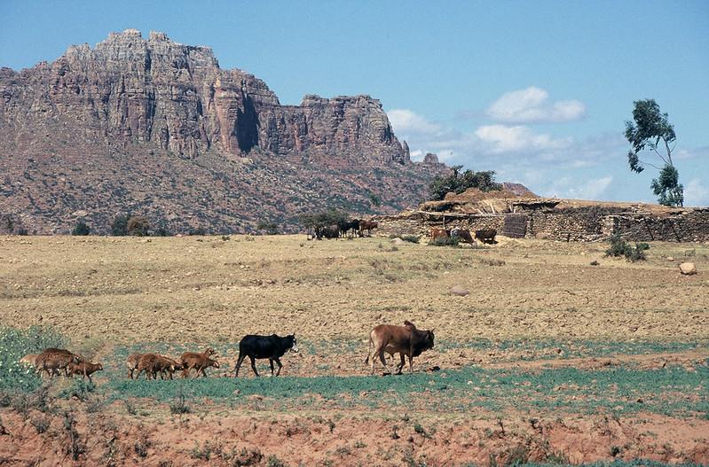 Tigrayan highlands in Northern Ethiopia