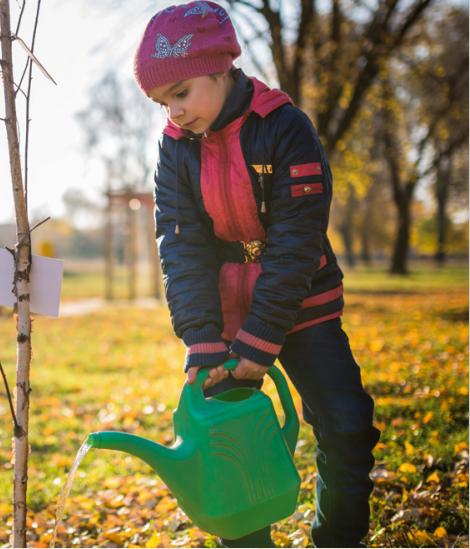 Tree Planting Resource